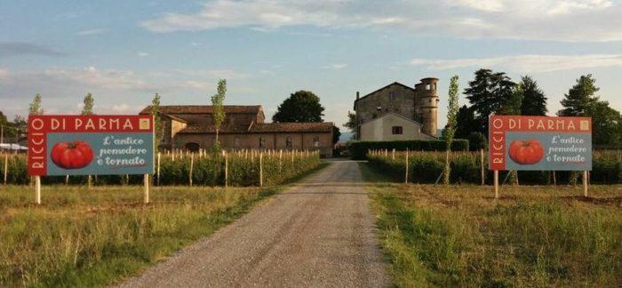 Pomodoro-Riccio-Parma