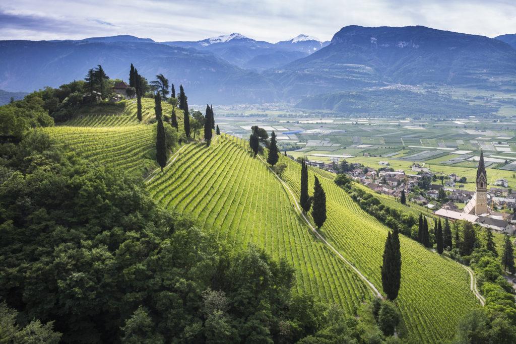 Elena Walch-cantina-Alto-Adige